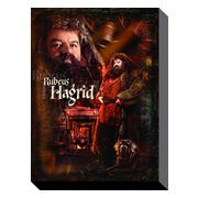 harry-potter-canvastryck-hagrid-1