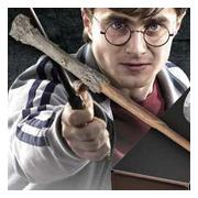 harry-potters-trollstav-1