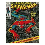 spiderman-miniaffisch-cover-1