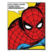 spiderman-miniaffisch-quote-1