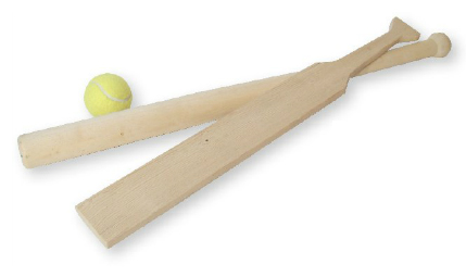 Bex Sport Brännboll Budget